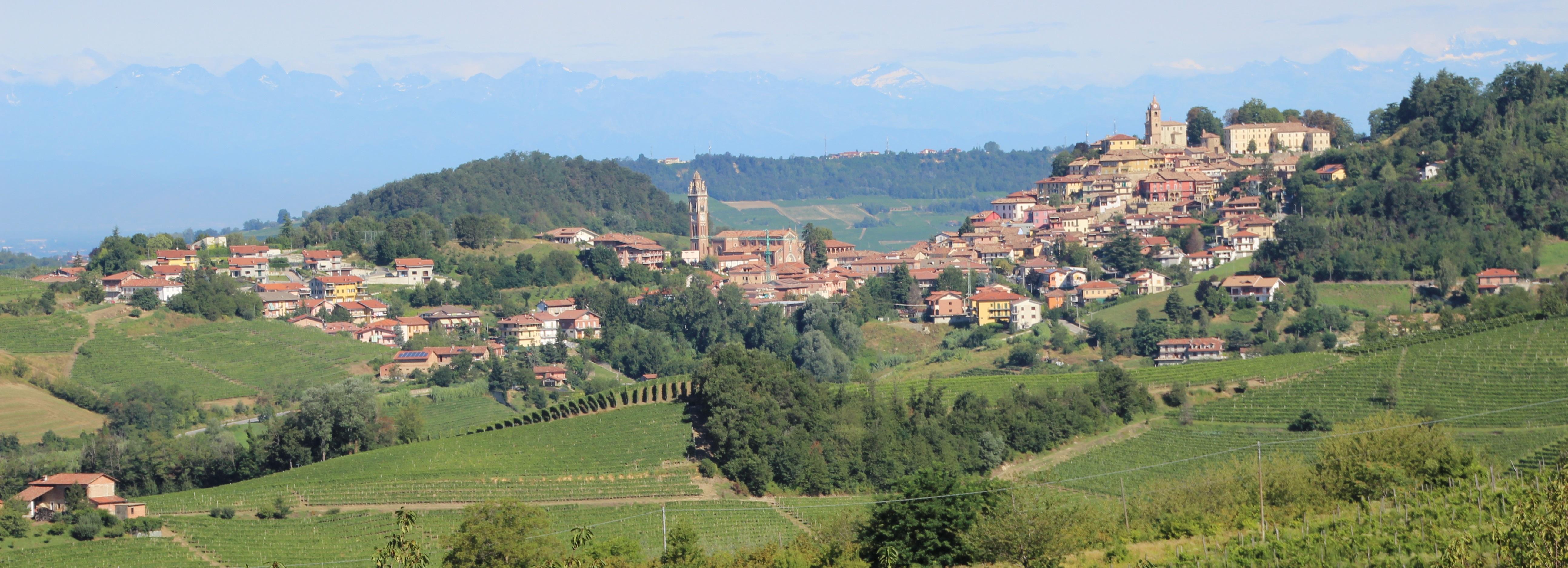 Monforte d'Alba set fra huset